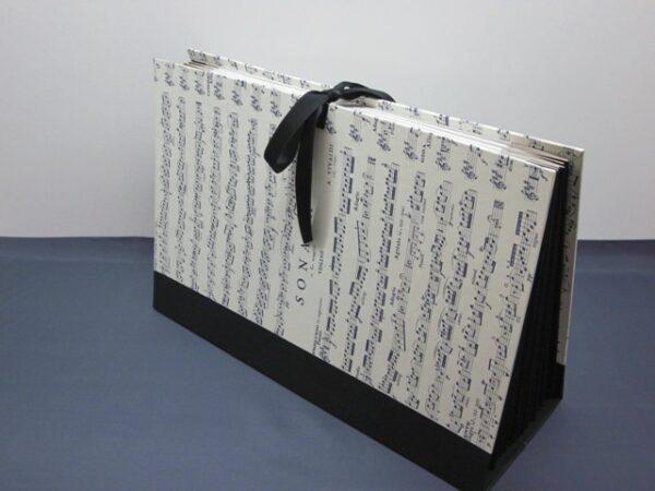 Carpeta de acordeón. Tamaño folio