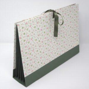 Carpeta de acordeón con 5 bolsas. II-17/V